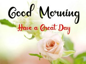 New Beautiful Good Morning Images wallpaper free download