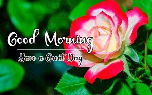 New Beautiful Good Morning Images wallpaper free hd