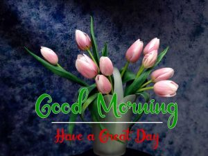 New Beautiful Good Morning Images wallpaper hd download