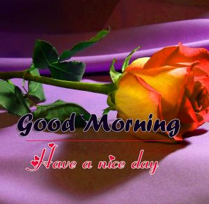 New Beautiful Romantic Good Morning Images Pics Download