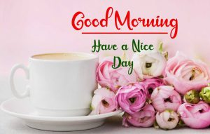 New Best Good Morning Images photo for free hd