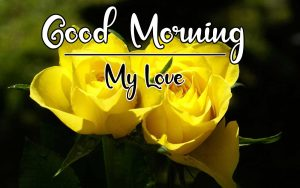 New Best Good Morning Images photo for hd