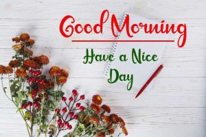 New Best Good Morning Images photo for whatsapp