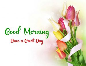 New Best Good Morning Images photo free download