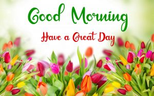New Best Good Morning Images photo hd download