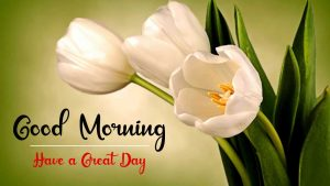 New Best Good Morning Images pics download