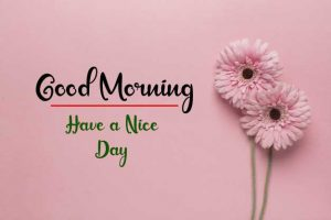 New Best Good Morning Images pics for free hd