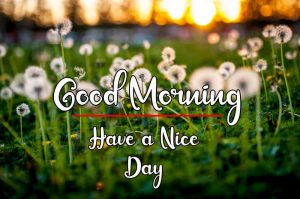 New Best Good Morning Images pics free download