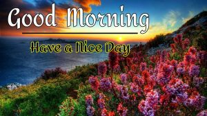 New Best Good Morning Images pics hd download