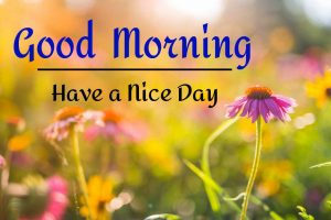 New Best Good Morning Images pics pictures hd