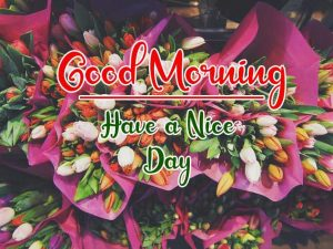 New Best Good Morning Images pictures download