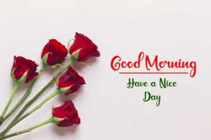 New Best Good Morning Images pictures for free download