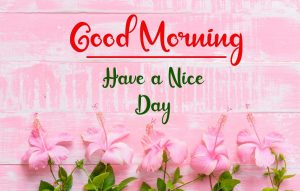 New Best Good Morning Images pictures for free hd