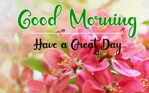 New Best Good Morning Images pictures free download