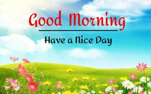 New Best Good Morning Images pictures free hd