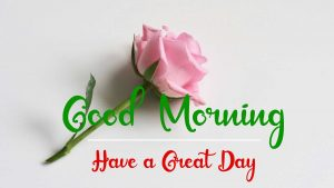 New Best Good Morning Images pictures hd