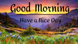 New Best Good Morning Images pictures hd download