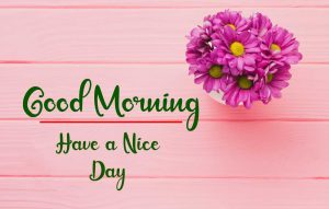 New Best Good Morning Images wallpaper for free download