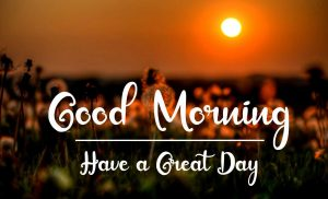 New Best Good Morning Images wallpaper for whatsapp