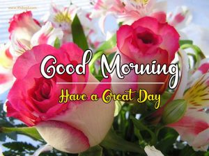 New Best Good Morning Images wallpaper free download