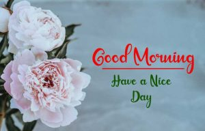 New Best Good Morning Images wallpaper free hd