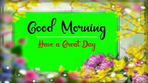 New Best Good Morning Images wallpaper photo pics free hd