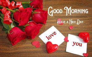 New Free Red Rose p Good Morning Images Pics Download