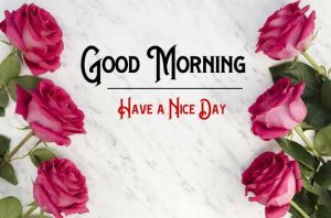 New Good Morning Images pics free download