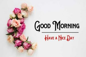 New Good Morning Images pics free hd download