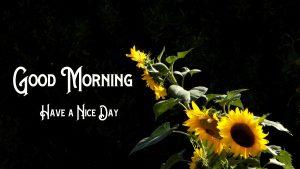 New Good Morning Images pics hd
