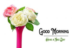New Good Morning Images pics photo hd