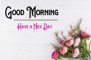 New Good Morning Images pics pictures hd
