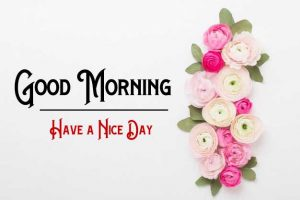 New Good Morning Images pictures download