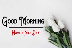 New Good Morning Images pictures for download