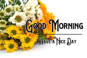 New Good Morning Images pictures free hd download