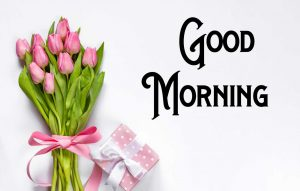 New Good Morning Images pictures free hd download for whatsapp