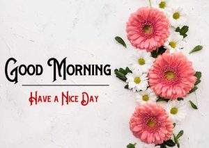 New Good Morning Images pictures hd