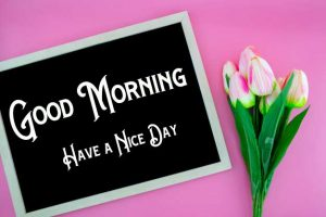 New Good Morning Images wallpaper for download