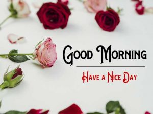 New Good Morning Images wallpaper for hd