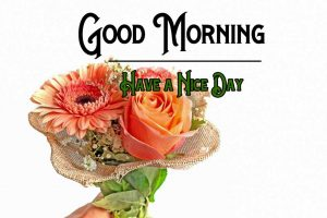 New Good Morning Images wallpaper free hd download