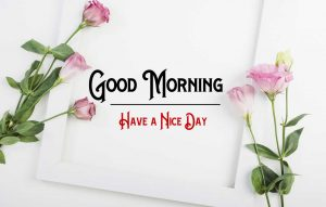 New Good Morning Images wallpaper hd download