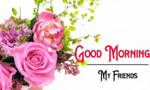 New Good Morning Images wallpaper pictures hd