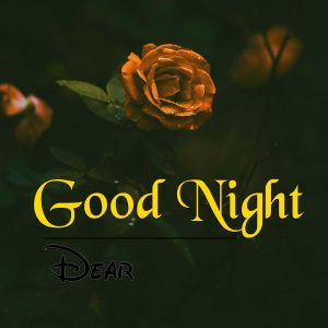 New Good Night Images Download