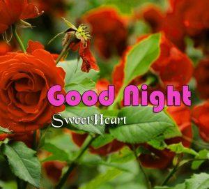 New Good Night Photo Wallpaper