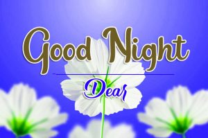 New Top Free Good Night Wishes Wallpaper Images