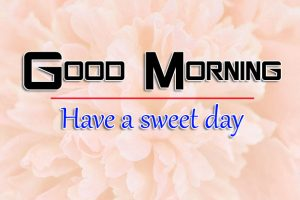 New Top Good Morning Images Photo Free Download