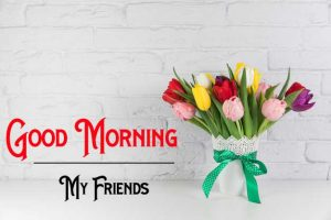 Nice New Good Morning Images photo download