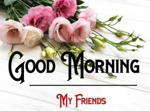 Nice New Good Morning Images photo for download