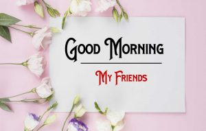 Nice New Good Morning Images photo free download