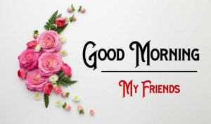 Nice New Good Morning Images photo free hd
